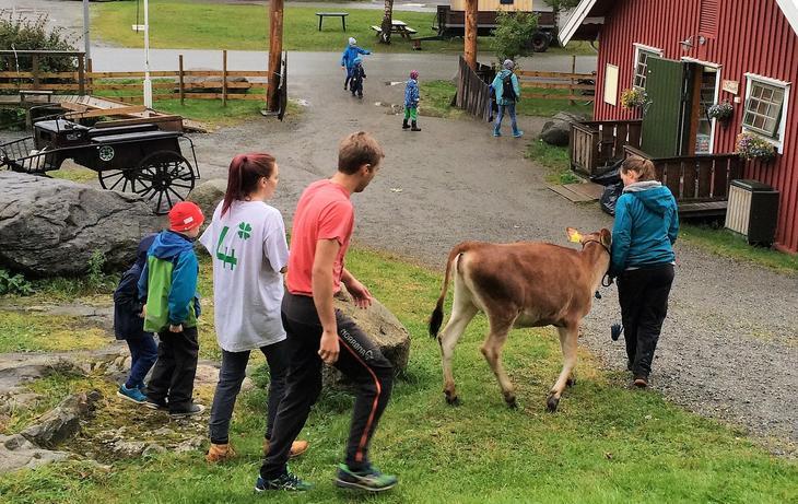 Bodin 4H-gård i Nordland