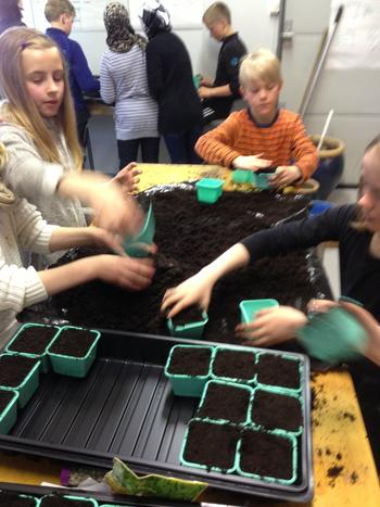 barn som planter