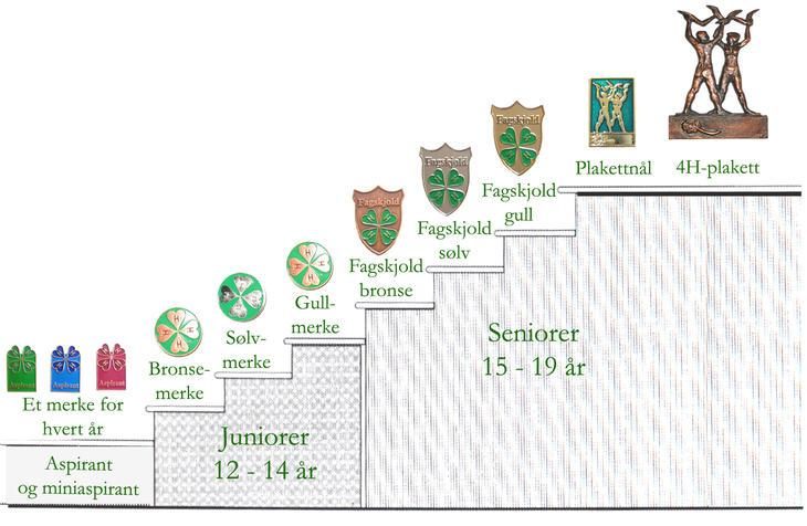 Illustrasjon av merkesystemet i 4H