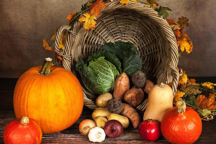 Forskjellige grønnsaker, foto: Sabrina Ripke fra Pixabay