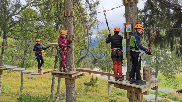 Ungdommer som klatrer i trærne i en klatrepark, foto: Rjupa 4H