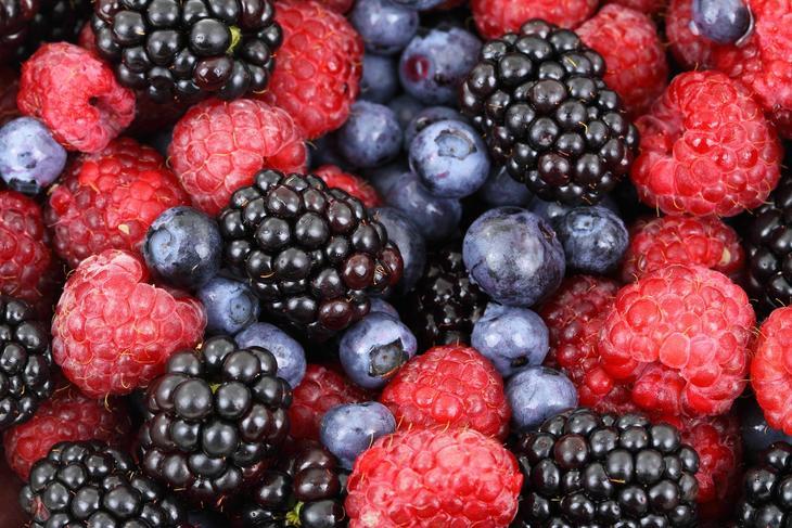 Bringebær, skogsbær og blåbær, foto: PublicDomainPictures fra Pixabay