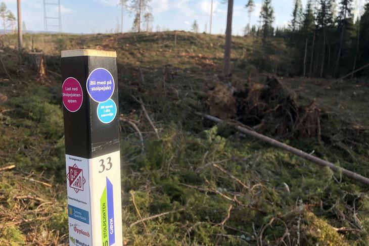 En stolpe i naturen, foto: Stolpejakten Gjøvikregionen
