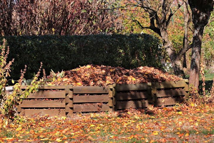 Kompostbinge med løv i, foto: S. Hermann & F. Richter fra Pixabay