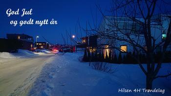 Julekort fra 4H Trøndelag